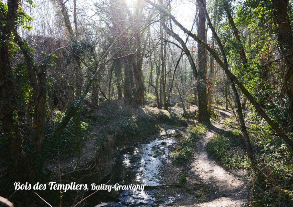 Bois des Templiers